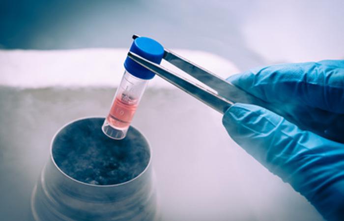 Открытие в трансплантологии: кости из жировой ткани